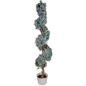 +CHR314A Frosted Spiral Topiary