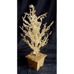 +CHR312G  Gold Ice Tree