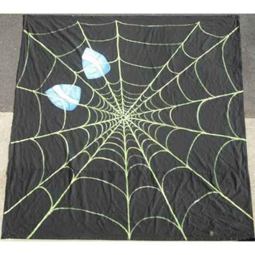 +HAL003 Spiderman Web Backdrop