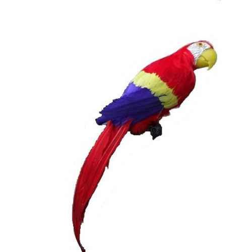 +JUN219A Macaw