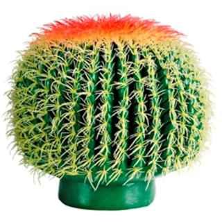 PLA002C Barrel Cactus