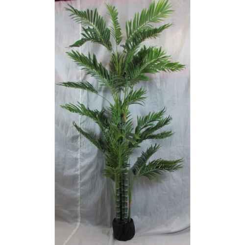 PLA013 Kentia Palm Deluxe 1