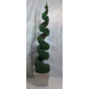PLA010A Spiral Topiary Tree