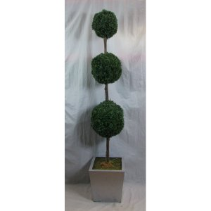 PLA010C Triple Ball Topiary Tree