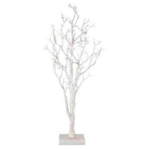 PLA010W.41 White Manzanita Tree 0