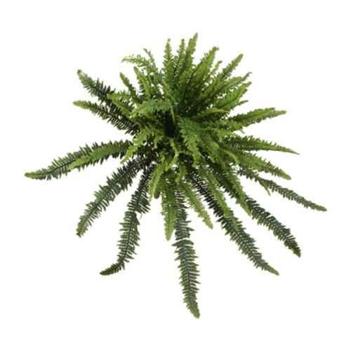 PLA040 Forest Fern 85cm