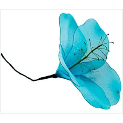 PLA107 Blue Hibiscus  71cm