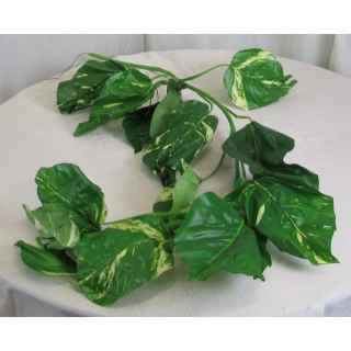 PLA062 Pothos Leaf Garland 1
