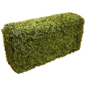 PLA100 Boxwood Hedge 1m