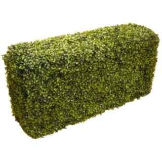 PLA100 Boxwood Hedge 1m