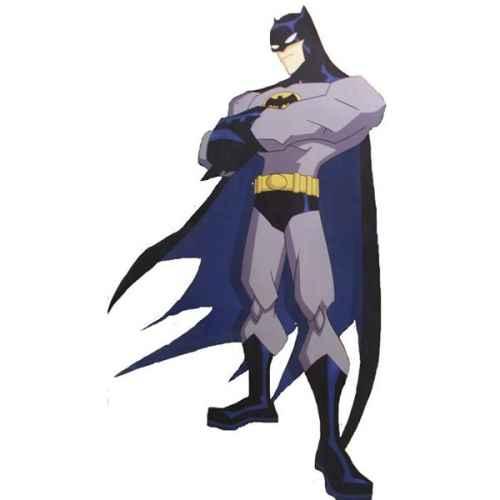 +SUP105 Batman Flat