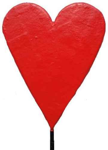 +VEG207 Heart 2D Model