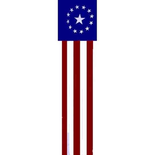 +WWE302B American Banner