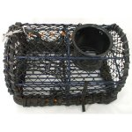 +YAC216 Lobster Pot