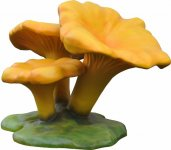 +GAR208C Giant Chanterelle Toadstool Cluster web
