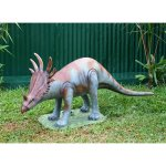 +PRE205.4 Baby Triceratops