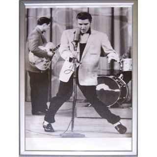 +FIF325 Elvis Poster web