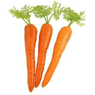 CAT277C Carrots pack of 3