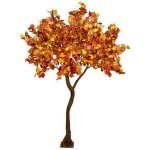 PLA642 Autumn Foliage Standard Tree