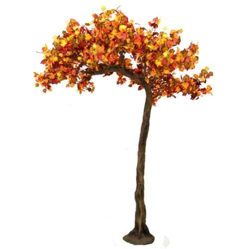 PLA641 Autumn Half Canopy Tree