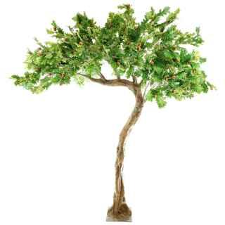 PLA661 Oak leaf half canopy tree
