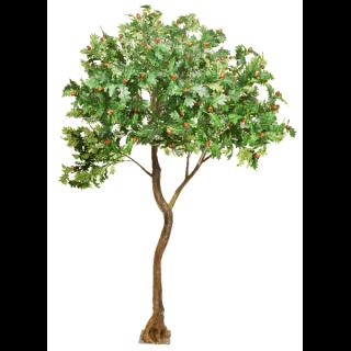 Oak Leaf Standard Tree web