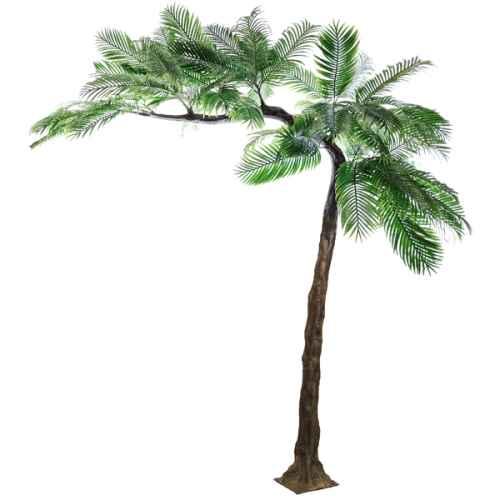 PLA675 Palm leaf canopy tree