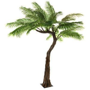 Palm Half Canopy Tree