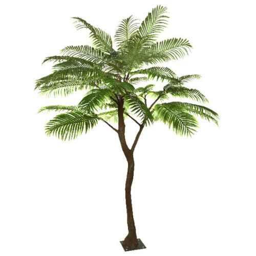 Palm Standard Tree