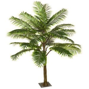 Palm Tabletop Tree