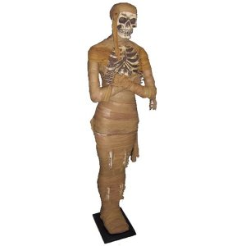 +EGY219B Mummy Skeleton