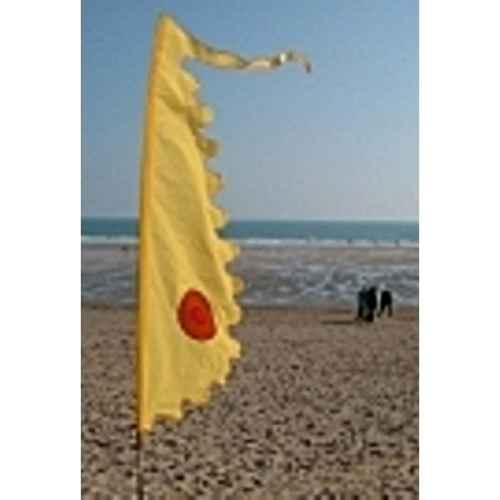 +FES300 3m Yellow Festival Flag in situ