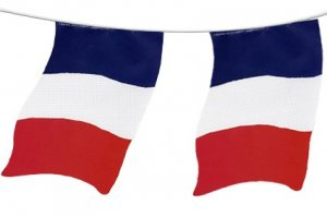+FLA106 France Bunting Cotton
