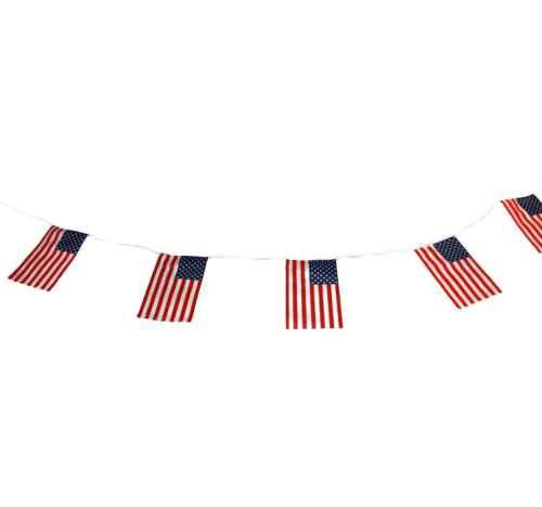 FLA102 USA Bunting Cotton web